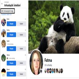 200 - 700 Arkadaşlı Bayan Facebook hesapları ( Çerezler ile birlikte teslim ) Kategorisi